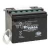 Batterie Yuasa YHD-12